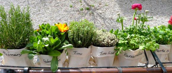 Come coltivare un orto sul balcone. - WikiCasa News